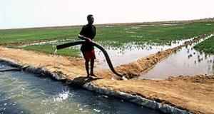 eritrea-irrigation  IPCC's AR5: Adaptation is fundamentally about risk management eritrea irrigation1