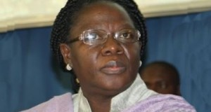 Director-General-and-Chief-Executive-Officer-NESREA-Dr-Ngeri-Benebo-360x225  NESREA: FG safeguards environment with 24 regulations Director General and Chief Executive Officer NESREA Dr Ngeri Benebo 360x225