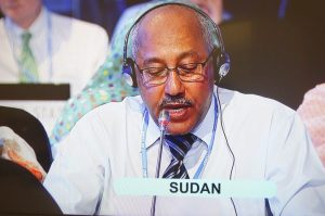 Chair of the African Group of Negotiators addressing the plenary  Lima COP 20 opening ceremony in pictures Sudan 300x199
