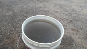 Acid rain harvested at Okwuzi. Photo credit: Dandy Mgbenwa