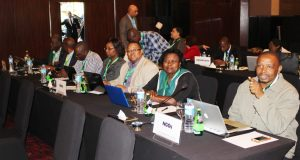 Participants at AMCEN in Egypt
