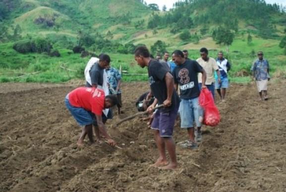 farming  Why farmers can't access loans to boost agriculture – NIRSAL farming can be fun e1428243318491