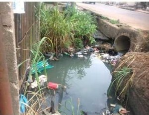 So many people are still in the habit of throwing waste on the road and in gutters; they litter the environment, causing blockages and stagnant water in drainages and gutters, and creating conducive breeding grounds for mosquitos