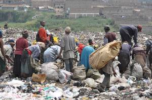 Scavengers at work. Photo credit: environment-today.org