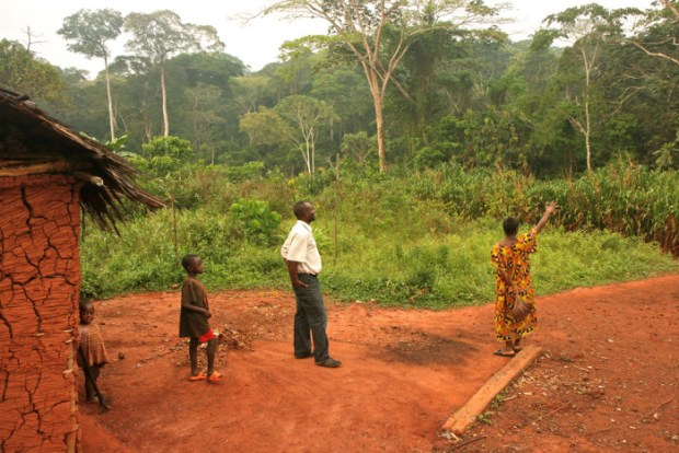 Forest-based communities in Cameroon have limited or no recognition of their customary land rights under Cameroon law. Photo credit: farm8.static.flickr.com