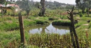 Uganda pix