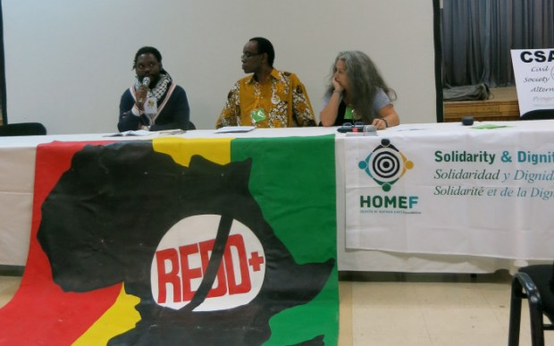 Delivering the No-REDD+ Declaration by the No REDD in Africa Network at the World Forestry Congress held in Durban, South Africa  Activists flay UN, loggers over Africa forest grab 'under guise of REDD+' no redd declaration e1441802539218