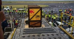 Eliska  DHL delivers Czech-born rhino Eliska to Tanzania Eliska