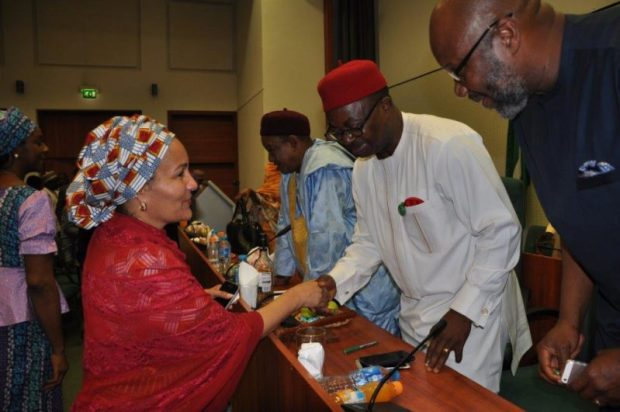 Amina J. Mohammed (Environment Minister) (left) with Sam Onuigbo (Chairman, House Committee on Climate Change)