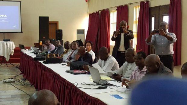 Participants at the Abuja validation