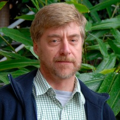 Douglas Sheil of the Norwegian University of Life Science. Sheil and fellow scientists reviewed over 400 Landsat satellite images of Borneo between 1973 and 2015 to track forest loss and degradation and the concomitant expansion of plantations.