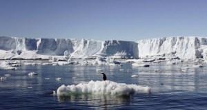 Antarctic Ocean  Antarctic Ocean hosts world's largest marine park antractica