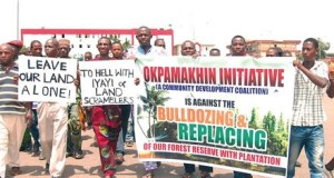Irhue Clan  Fresh concern over endangered Irhue rainforest Protest by the Oke community