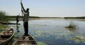Nguru-Hadejia-Wetlands