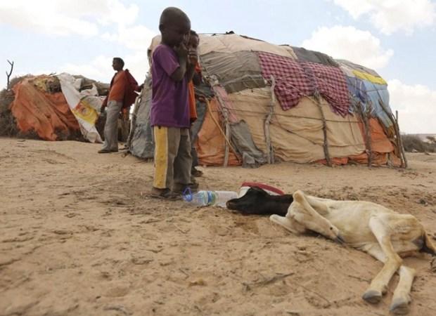 Somalia  UN warns of famine as drought intensifies in Somalia Somalia