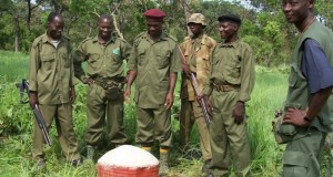 National Park rangers  World Ranger Day: National Park Service laments slain rangers Rangers