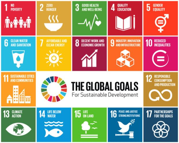 Sustainable Development Goals  1m people in 1,300 cities, 150 countries celebrate SDGs at three SDGs e1511463170306