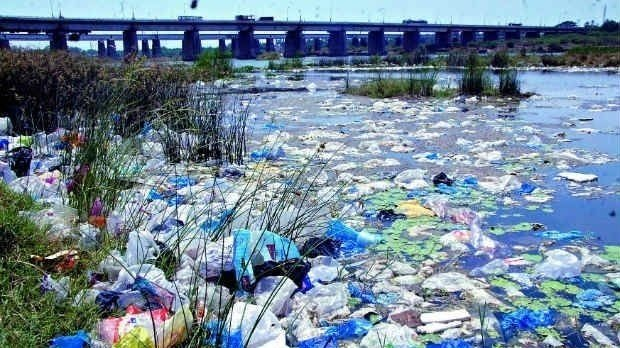 Plastic bags pollution
