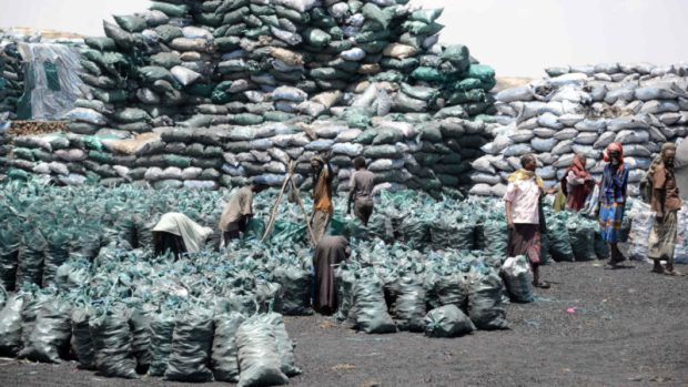 Somalia charcoal trade  Somalia calls for international cooperation to stop illegal charcoal trade Somalia charcoal trade e1525722876901