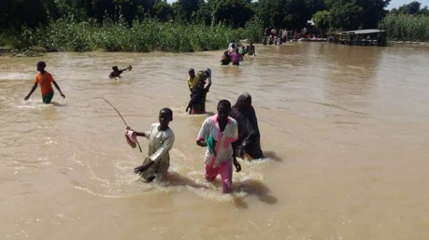 Jigawa flood  Council warns farmers against destroying Hadejia River embankment Jigawa