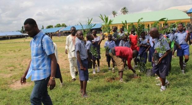 WEP tree planting