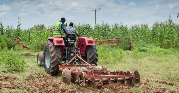 ActionAid Agriculture