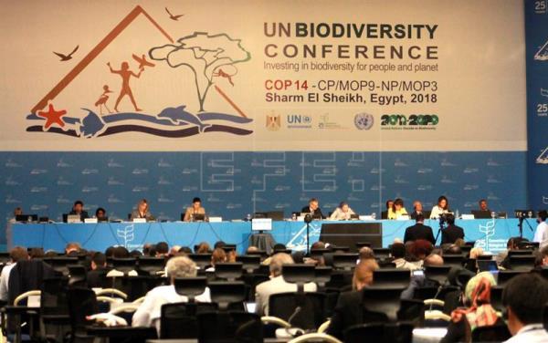 UN Biodiversity Conference