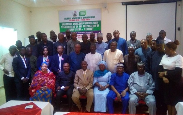 Nigeria's REDD+ Strategy