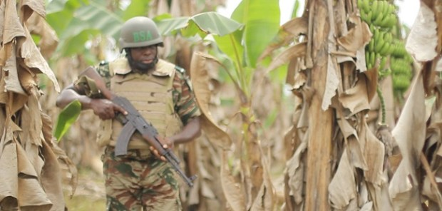 Soldier guarding the plantation  Agony of plantation workers in war-torn Anglophone Cameroon Soldier guarding the plantation