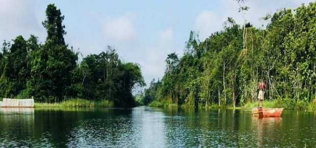 River Ethiope   Groups draft law to give River Ethiope legal rights Ethiope 1