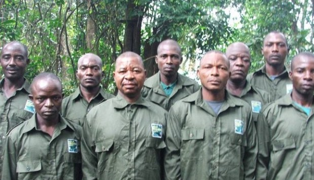 Forest guards  Kano recruits 100 forest guards to curb deforestation Forest guards