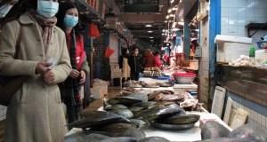 Huanan Seafood Market  Coronavirus: Group urges ban on wildlife markets Huanan Seafood Market
