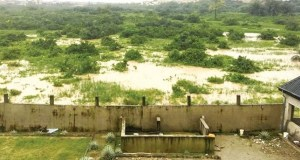 Magodo Green Belt  Lagos denies approving housing development in Magodo Greenbelt Magodo