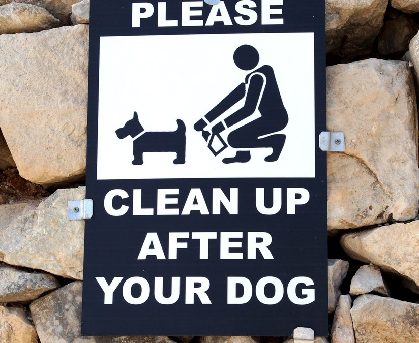Things That Matter: Eco-Friendly Dog Poop Bags