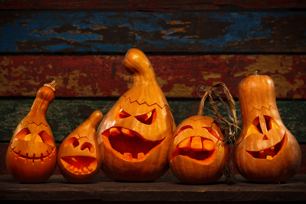 California Drought Makes Jack-O'-Lanterns, Corn Mazes Smaller