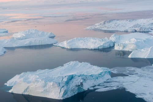 Icebergs in Illulissat Icefjord, Greenland are evidence of ice sheets melting at an accelerated rate and impacting the salinity of seawater surrounding Greenland.
