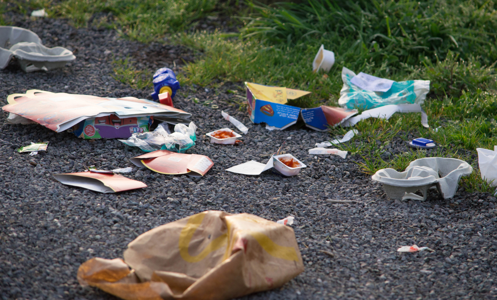 A group of British researchers says that more needs to be done to deal with the growing environmental impact of take-out containers. But how do we do that? Photo by Michael J P / Shutterstock.com