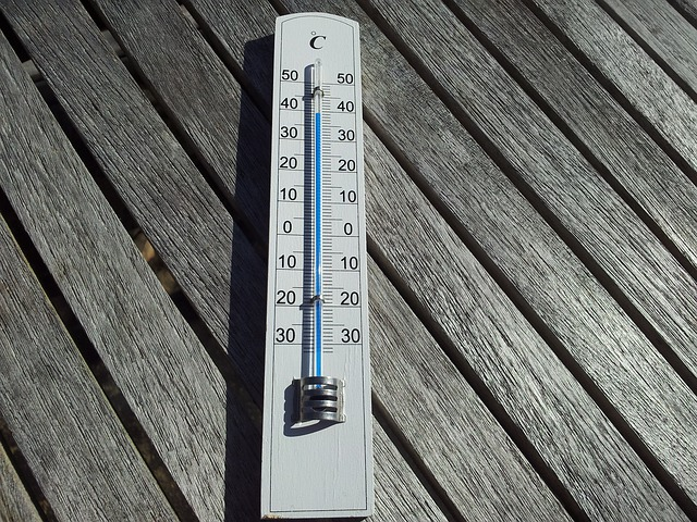 Thermometer laying on top of wood