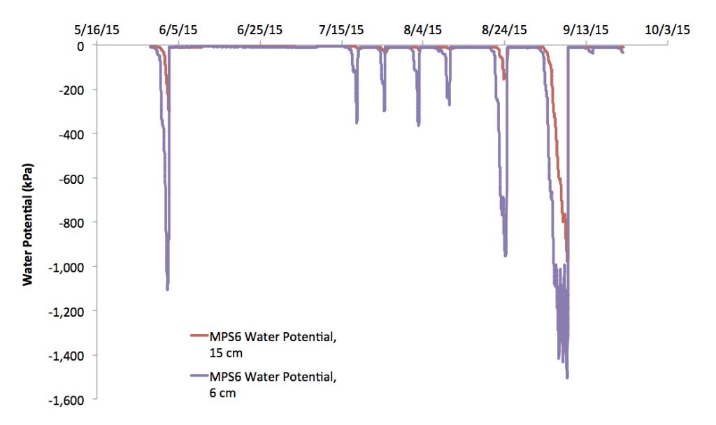 Turf farm data concerning water potential diagram
