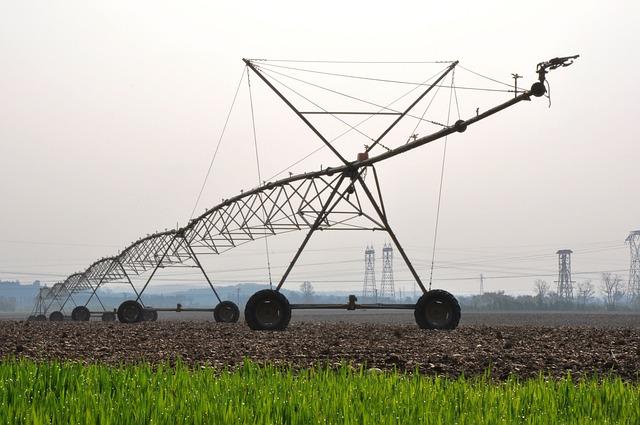 Irrigation sprinkler line set up in a pastor or field