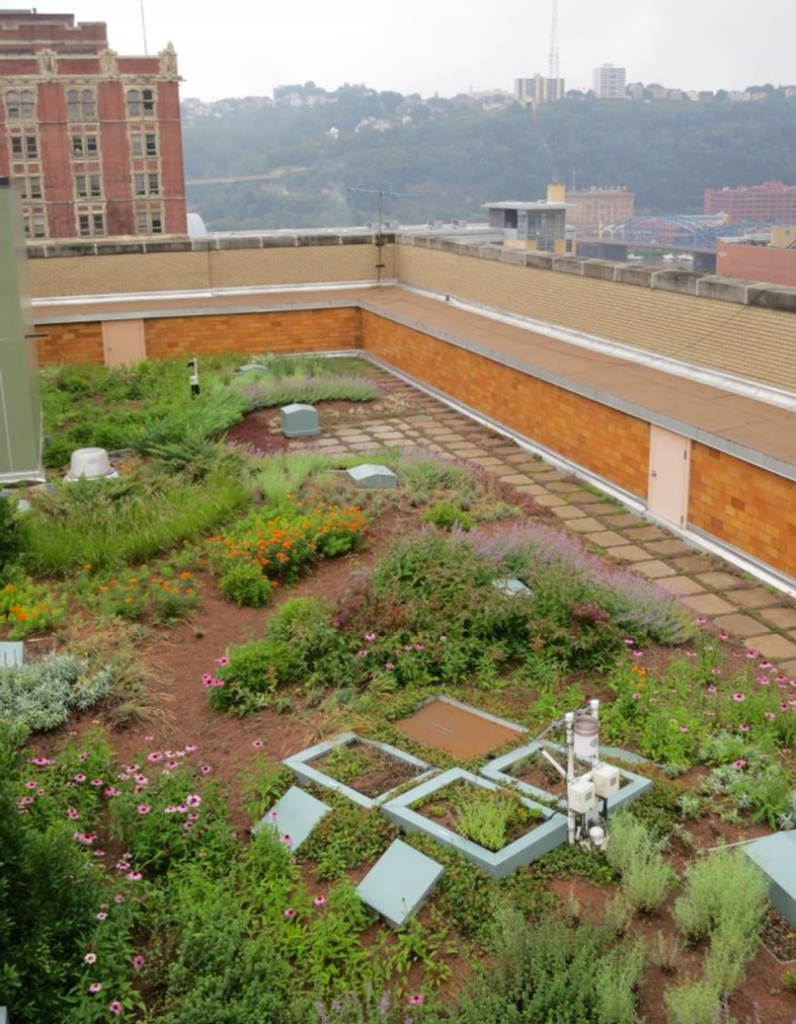 Garden on a rooftop with flowers and a city around it