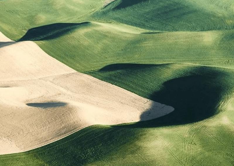 Rolling farm fields