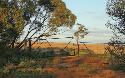 Book Launch: Mallee Country