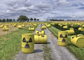 """Criminalità ambientale: il grande mostro """"Ecomafia"""""""