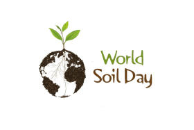 world_soil_day_graphic