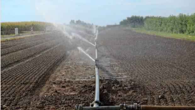 Bassin Seine-Normandie: 6,6 millions d'euros supplémentaires pour l'agriculture biologique