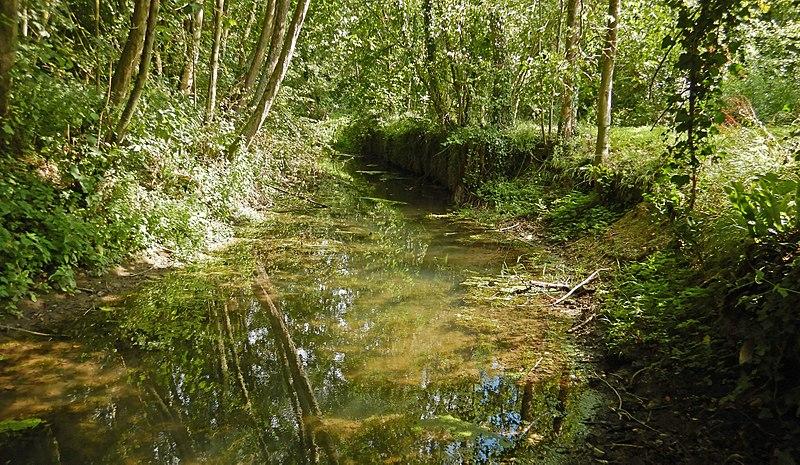 Relance: 35,8 millions d'euros supplémentaires attribués par l'agence de l'eau Loire-Bretagne