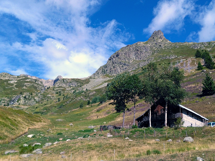 La Haute-Savoie engagée pour la préservation des alpages