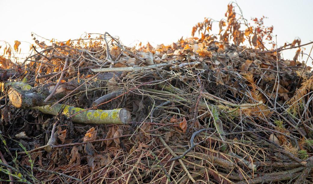 Waste2Grids: une production d'énergie flexible à partir de biomasse