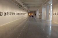 Gallery Lighting Design